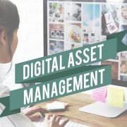 B2B Digital Asset Management